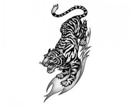 Эскизы черно белые тигра