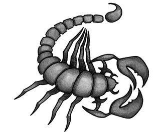 Эскизы черно белые скорпиона часть 1