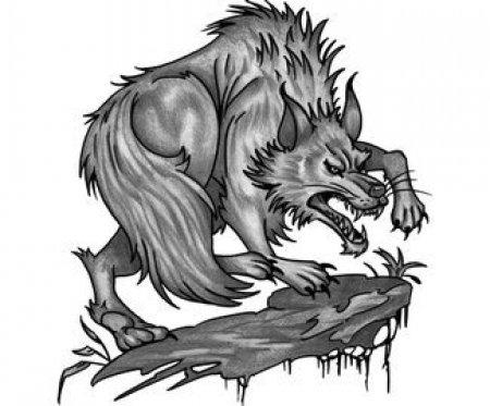 Эскизы черно-белые волка. Часть 2
