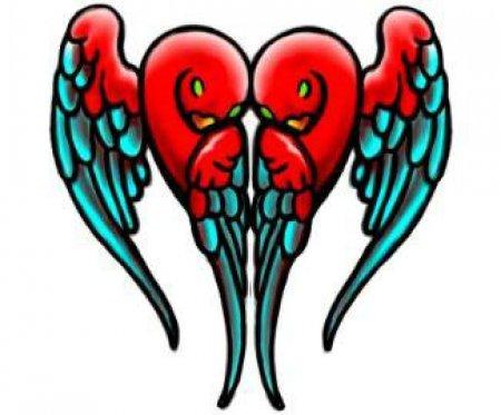 Эскизы крыльев