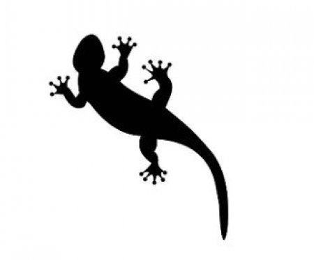 Эскизы татуировки лягушки