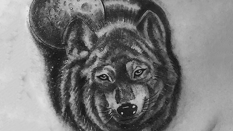 волк портретный